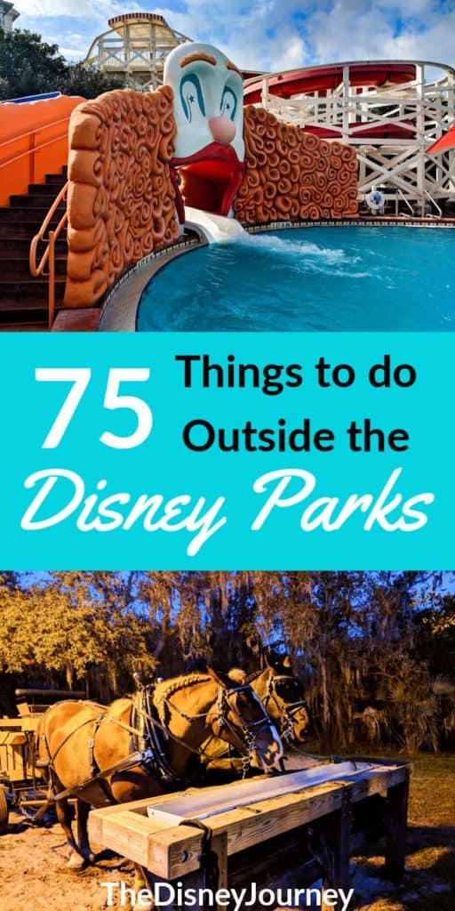 Things to do in Disney World besides the parks pin