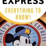 Disney's Magical Express pin