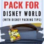 Disney packing list pin