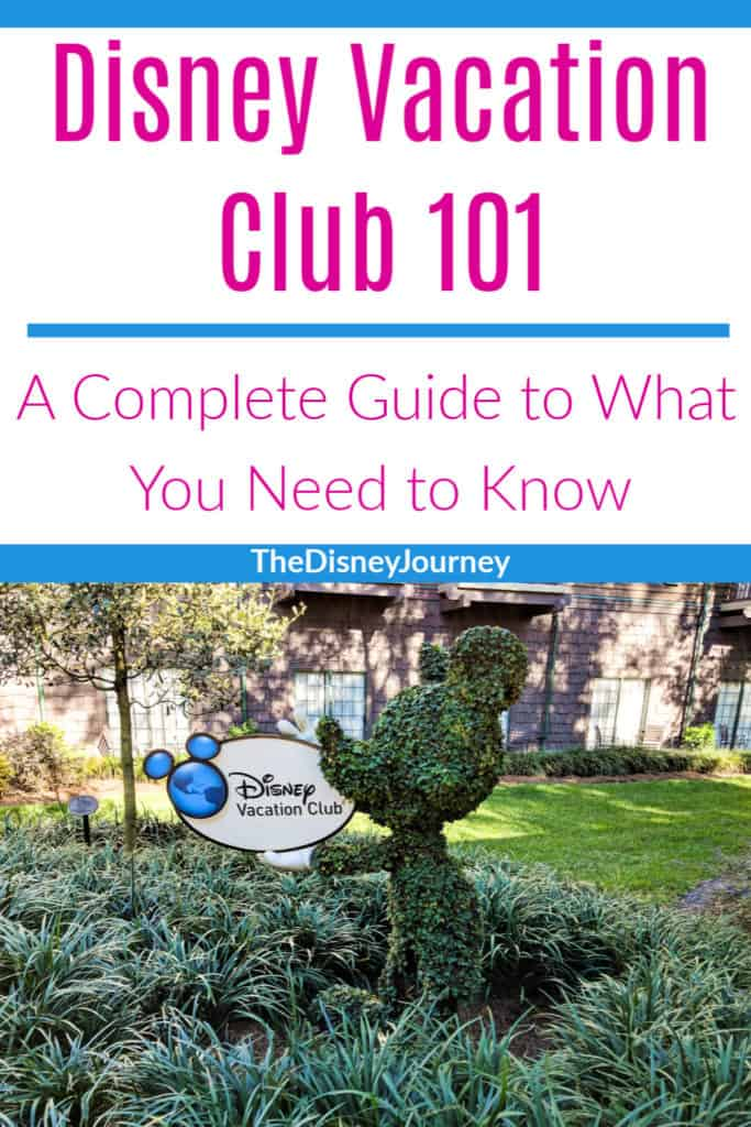 Disney Vacation Club pin