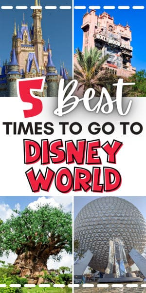 Best time of year to go to Disney World pin image