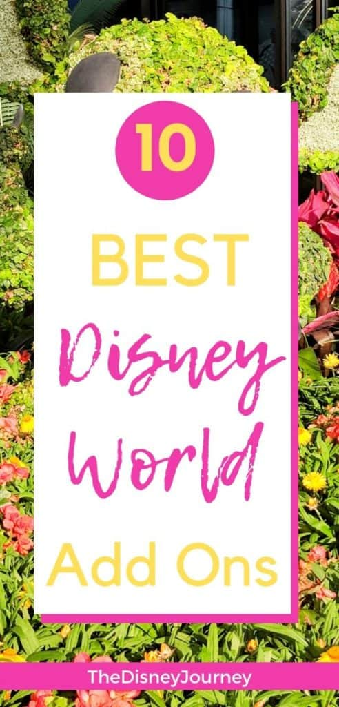 Best Disney add ons pin