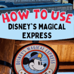 Disney's Magical Express pin image