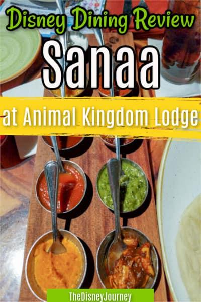 Disney Sanaa review pin image
