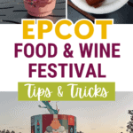 Disney Food and Wine Festival pin image