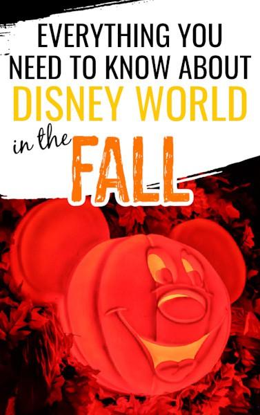 Disney World in fall Pin image