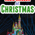 Magic Kingdom Christmas pin image