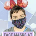 Face masks at Disney pin image