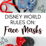 Disney World face mask rules pin image