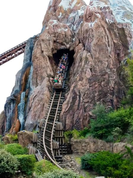 Train going down the big hill on Expedition Everest at Animal Kingdom