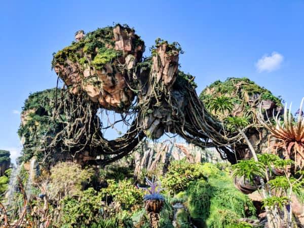 Floating Mountains of Pandora at Animal Kingdom