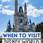 Should you go to disney in 2021 or 2022 pin image
