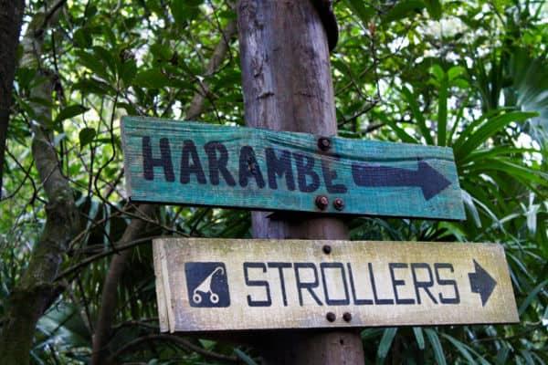 Stroller sign at Disney World