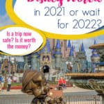 is it safe to go to disney in 2021 pin image