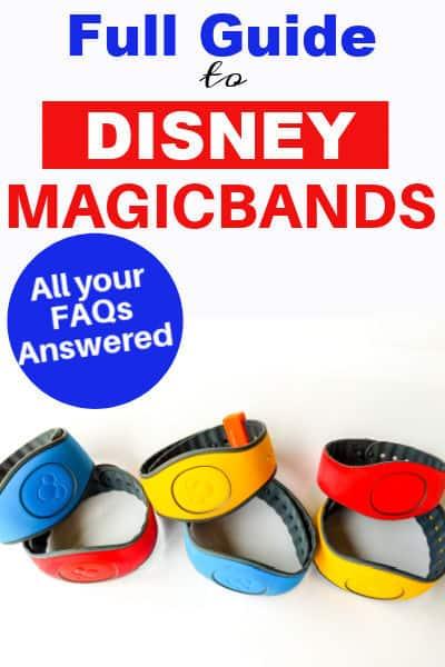 Disney magicband pin image