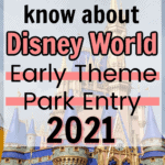 Disney Early Theme Park Entry Pin image