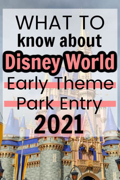 Disney World early entry pin image