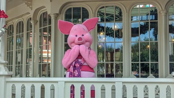 Piglet at Christmas at Magic Kingdom