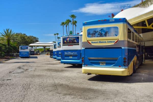 Disney airport transportation: a line of buses outside the airport